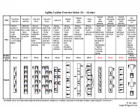 Agility Ladder Exercise Series